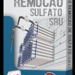 Curso SRU-Remoção de Sulfato Leciona.com